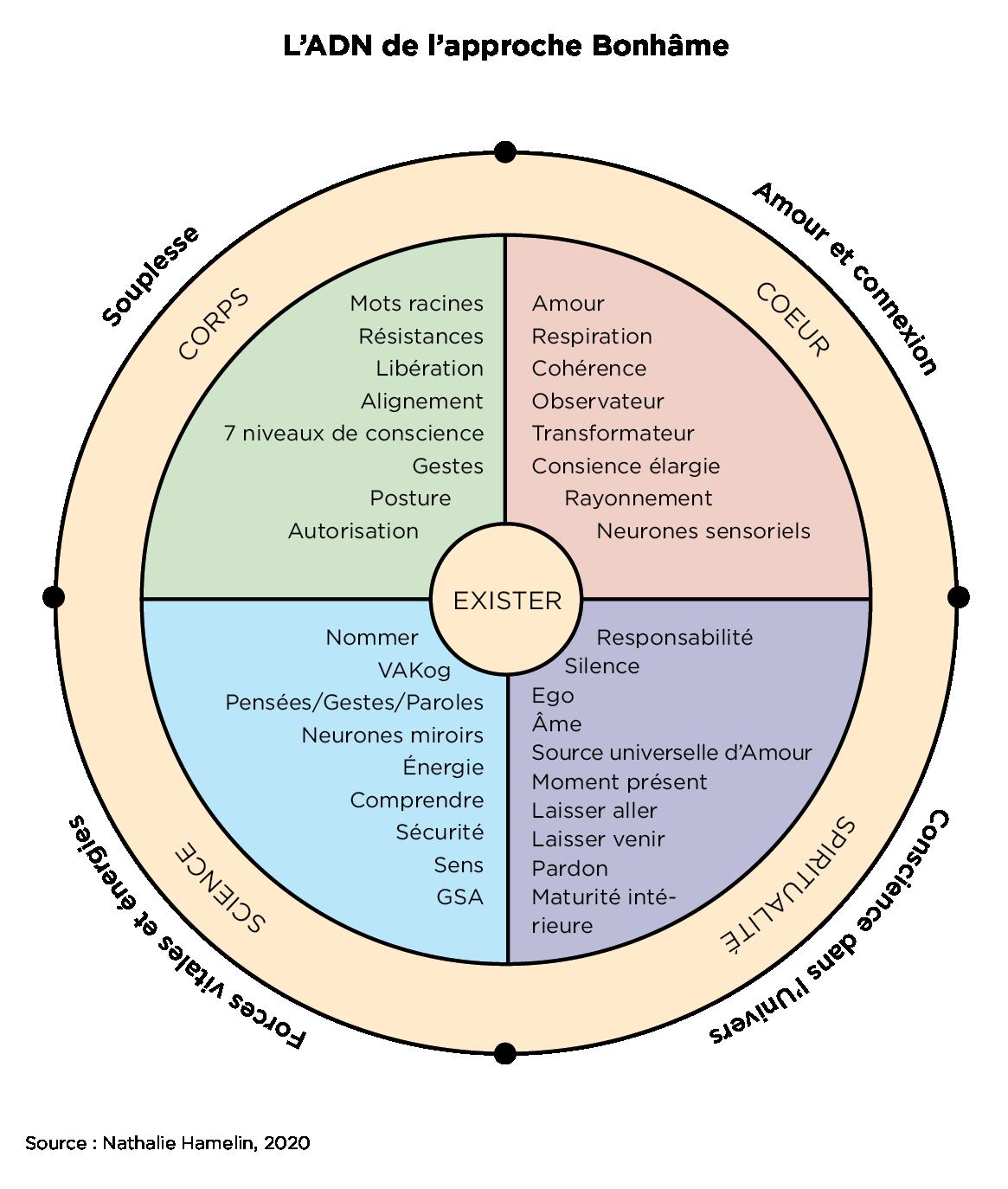 Cahier-Exercices-Bonhame-ADN-COULEUR